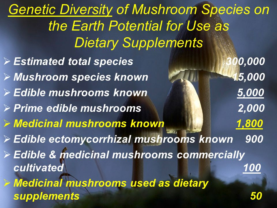 Genetic Diversity of Mushroom Species on the Earth Potential for Use as Dietary Supplements  Estimated total species 300,000  Mushroom species known 15,000  Edible mushrooms known 5,000  Prime edible mushrooms 2,000  Medicinal mushrooms known 1,800  Edible ectomycorrhizal mushrooms known 900  Edible & medicinal mushrooms commercially cultivated 100  Medicinal mushrooms used as dietary supplements 50