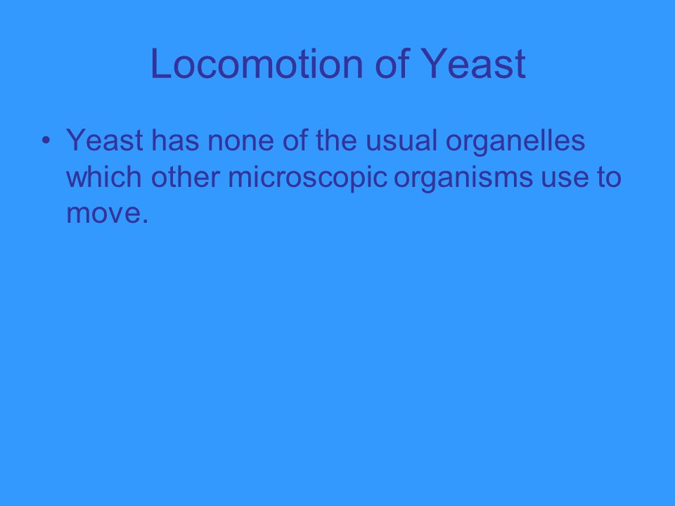 Locomotion of Yeast Yeast has none of the usual organelles which other microscopic organisms use to move.