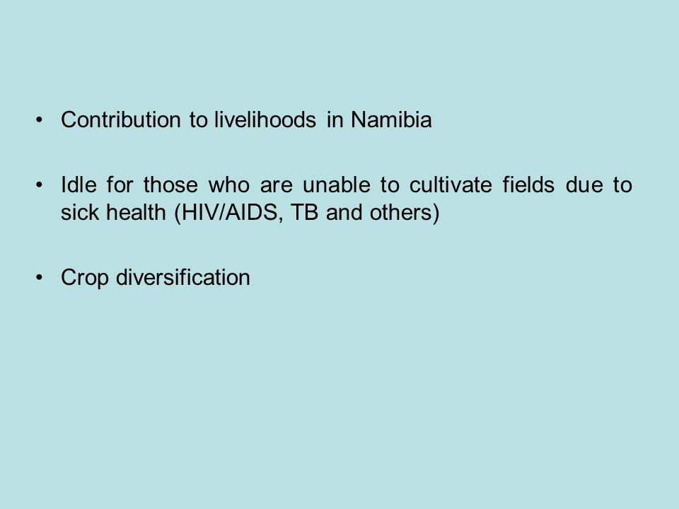 Contribution to livelihoods in Namibia Idle for those who are unable to cultivate fields due to sick health (HIV/AIDS, TB and others) Crop diversifica