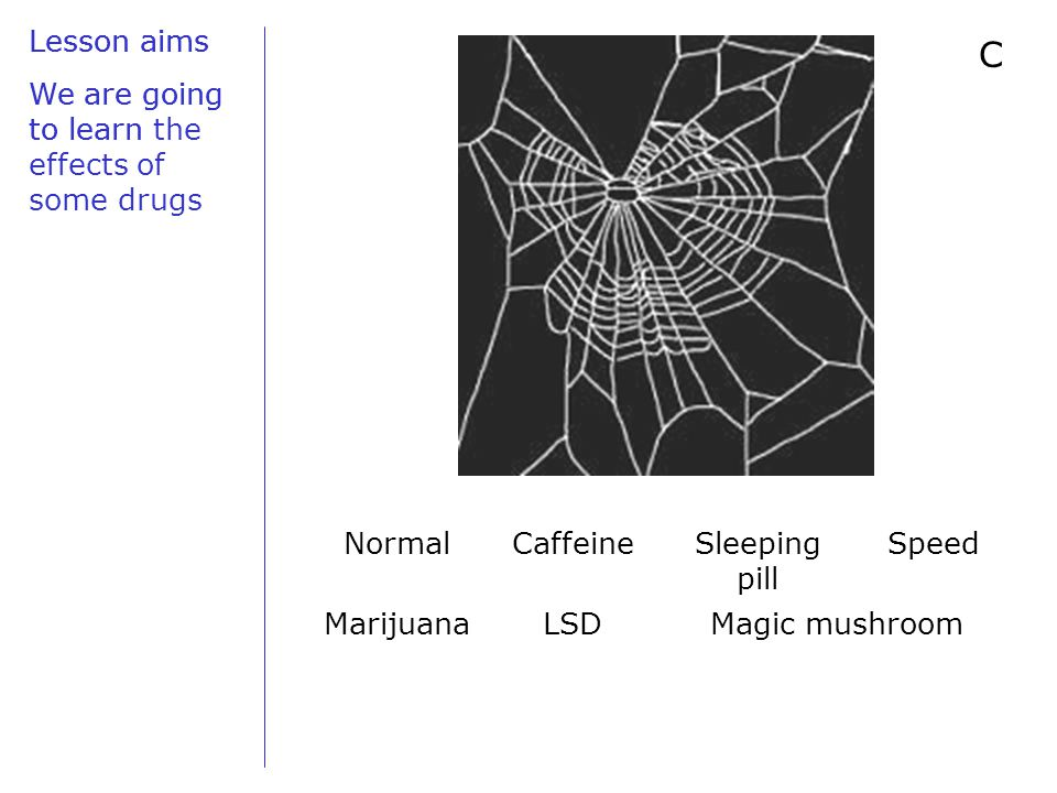 Lesson aims We are going to learn C NormalCaffeineSleeping pill Speed MarijuanaLSDMagic mushroom Lesson aims We are going to learn the effects of some drugs