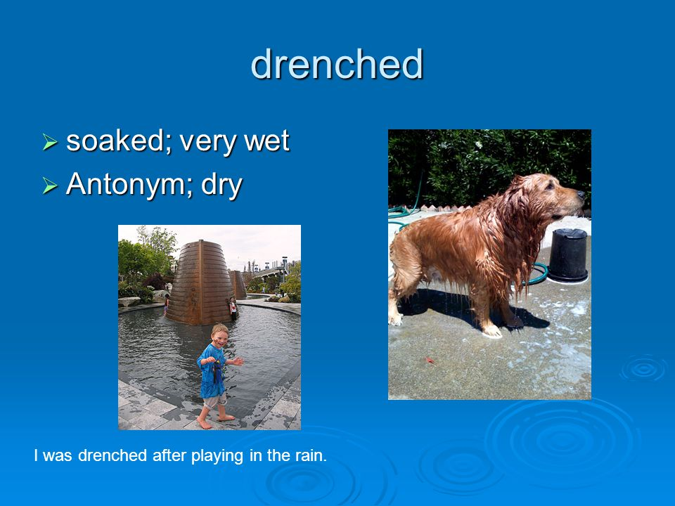 drenched  soaked; very wet  Antonym; dry I was drenched after playing in the rain.