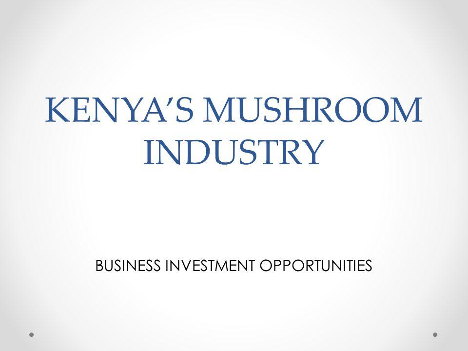 KENYA'S MUSHROOM INDUSTRY BUSINESS INVESTMENT OPPORTUNITIES