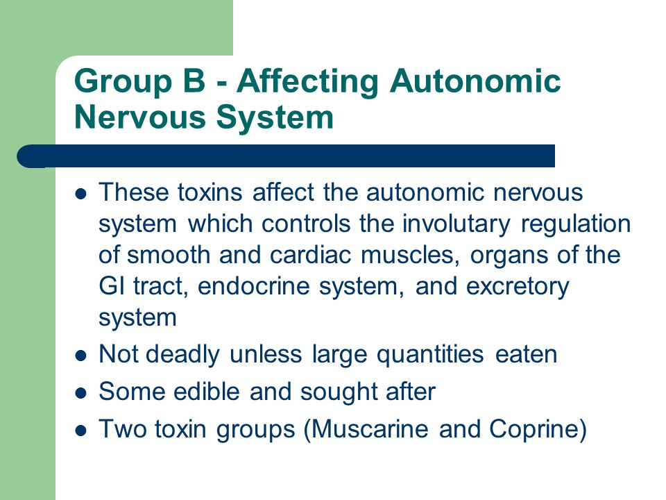 Group B - Affecting Autonomic Nervous System These toxins affect the autonomic nervous system which controls the involutary regulation of smooth and cardiac muscles, organs of the GI tract, endocrine system, and excretory system Not deadly unless large quantities eaten Some edible and sought after Two toxin groups (Muscarine and Coprine)