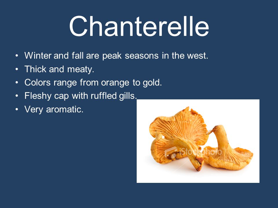 Chanterelle Winter and fall are peak seasons in the west.