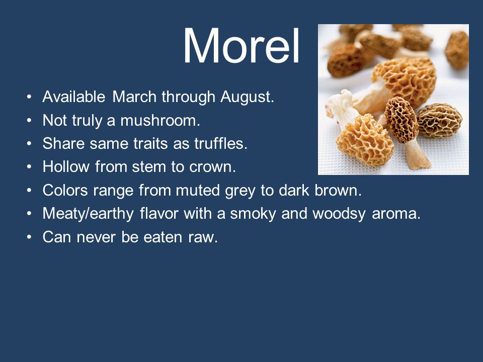 Morel Available March through August. Not truly a mushroom.