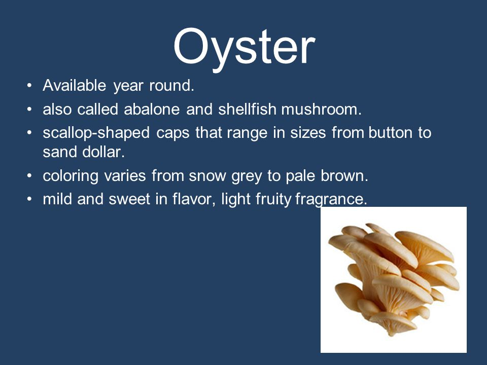 Oyster Available year round. also called abalone and shellfish mushroom.