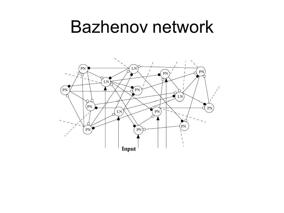 Bazhenov network
