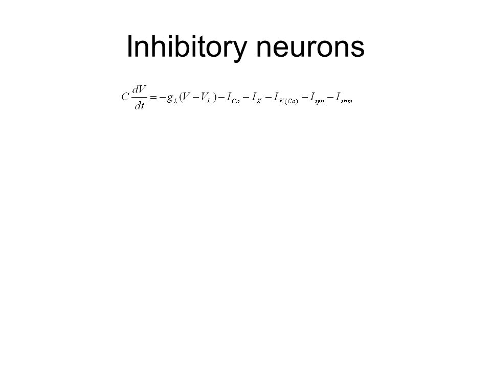 Inhibitory neurons