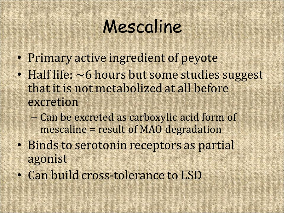 Mescaline Primary active ingredient of peyote Half life: ~6 hours but some studies suggest that it is not metabolized at all before excretion – Can be
