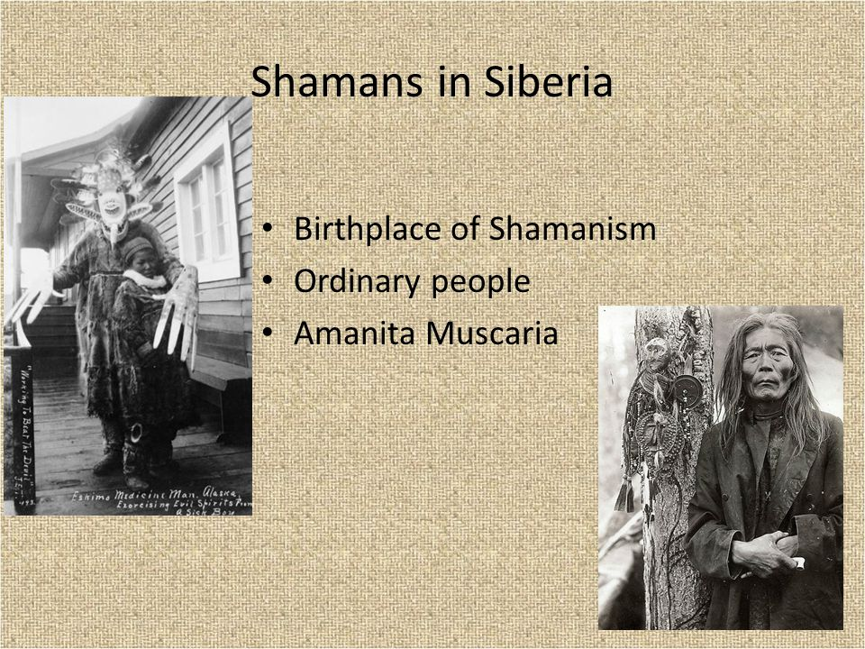 Shamans in Siberia Birthplace of Shamanism Ordinary people Amanita Muscaria