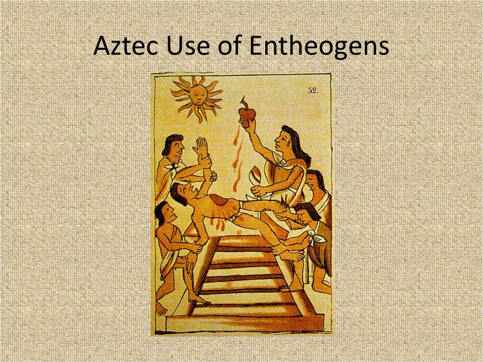 Aztec Use of Entheogens