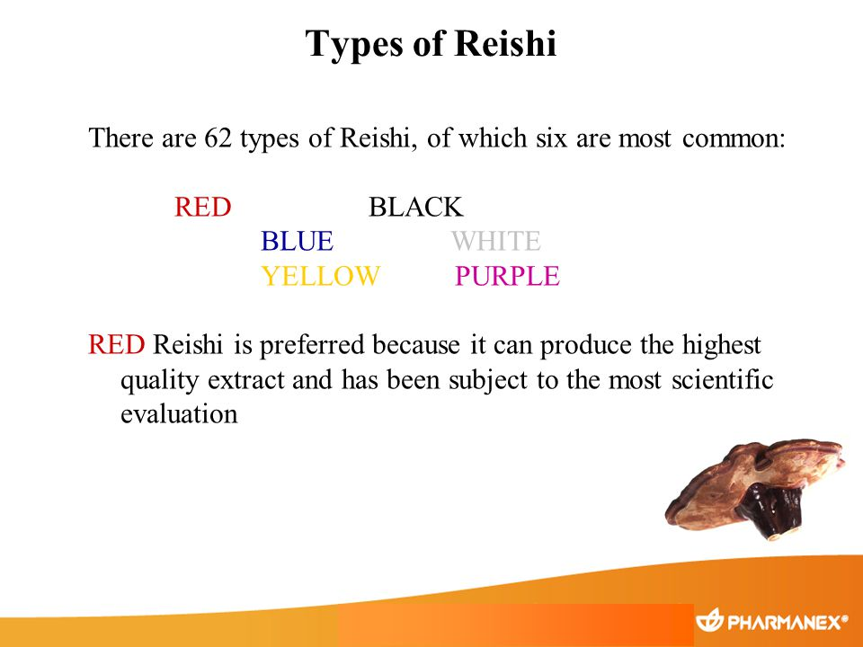Types of Reishi There are 62 types of Reishi, of which six are most common: RED BLACK BLUE WHITE YELLOW PURPLE RED Reishi is preferred because it can