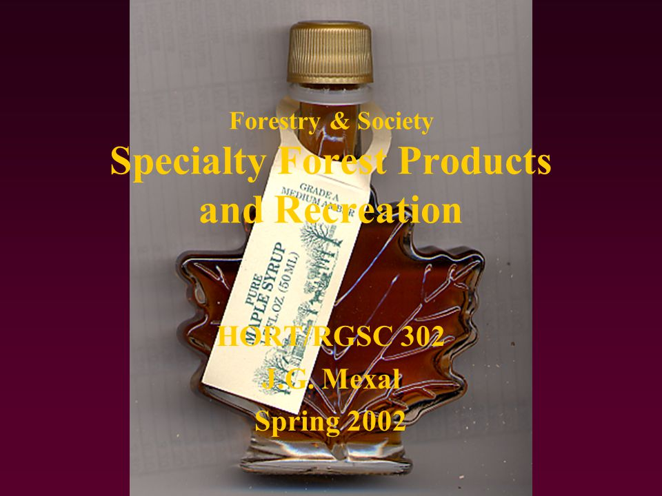Forestry & Society Specialty Products/Review Questions What are some of the specialty products extracted from forests in the US.