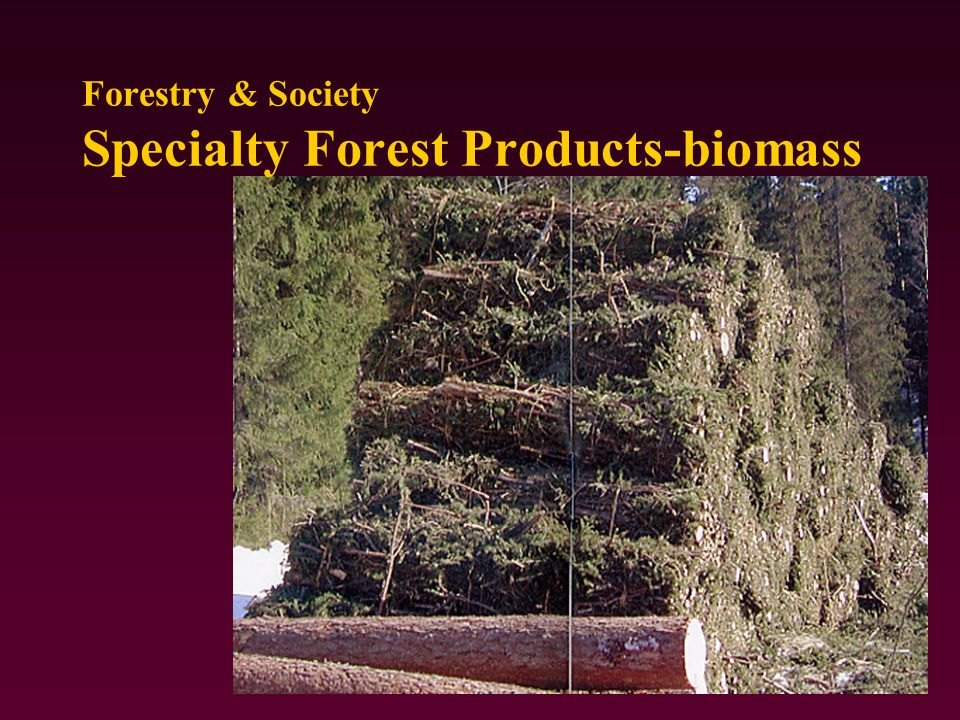Forestry & Society Specialty Forest Products-biomass