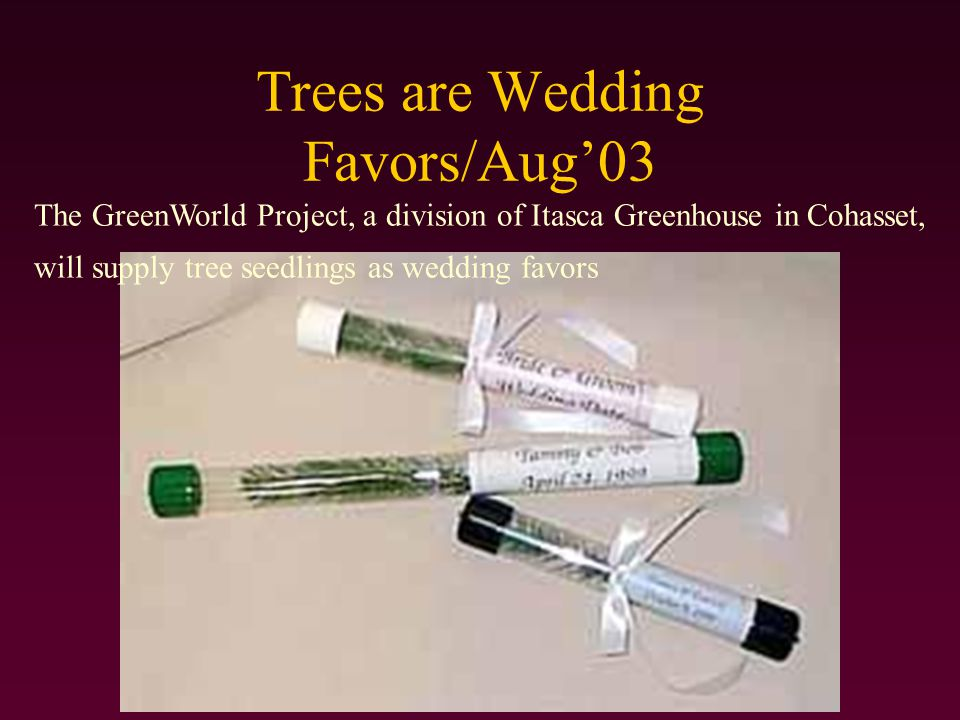 Trees are Wedding Favors/Aug'03 The GreenWorld Project, a division of Itasca Greenhouse in Cohasset, will supply tree seedlings as wedding favors