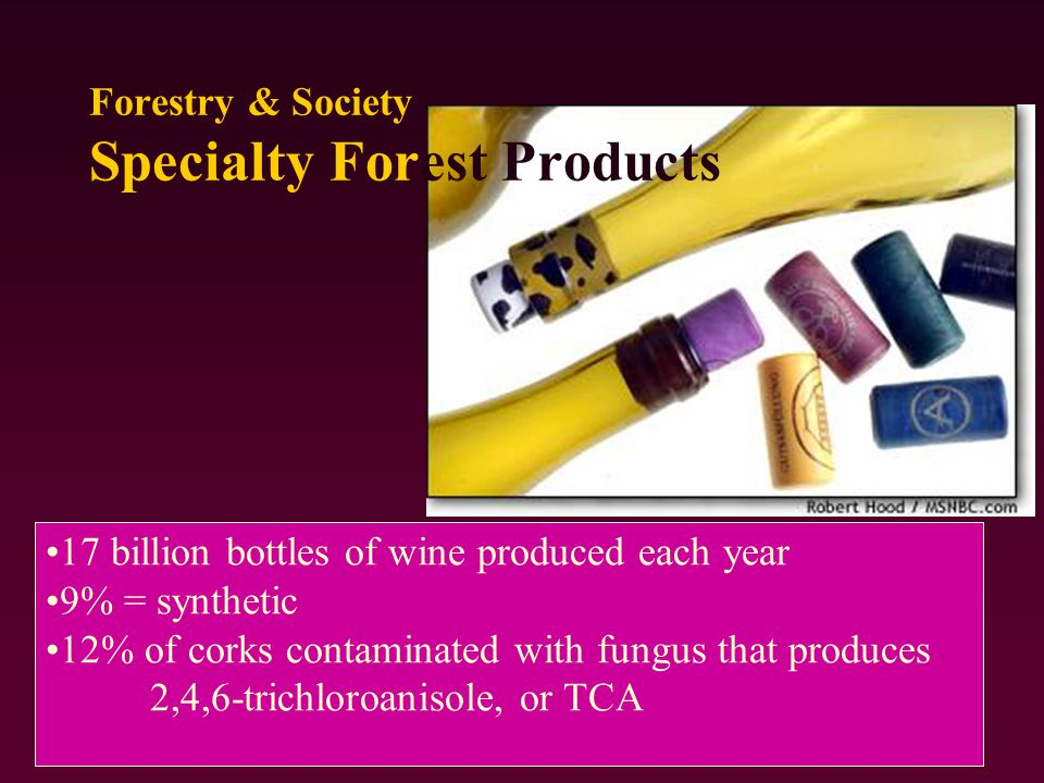 17 billion bottles of wine produced each year 9% = synthetic 12% of corks contaminated with fungus that produces 2,4,6-trichloroanisole, or TCA Forestry & Society Specialty Forest Products