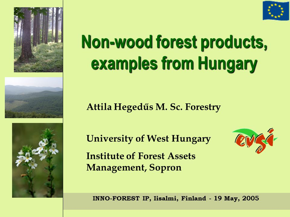 INNO-FOREST IP, Iisalmi, Finland - 19 May, 2005 Weaknesses – Lack of capital – No real packaging, processing background – No real product innovation – Weak enterprise management – Weak marketing knowledgeStrengths – Flexibility – Reliability – Expert's knowledge – Stable picking- network – Versatility Strenghts - Weaknesses