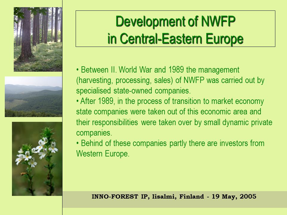 INNO-FOREST IP, Iisalmi, Finland - 19 May, 2005 Development of NWFP in Central-Eastern Europe Between II.