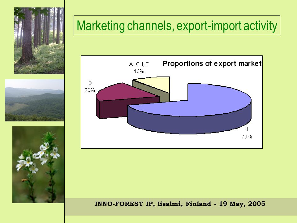 INNO-FOREST IP, Iisalmi, Finland - 19 May, 2005 Marketing channels, export-import activity