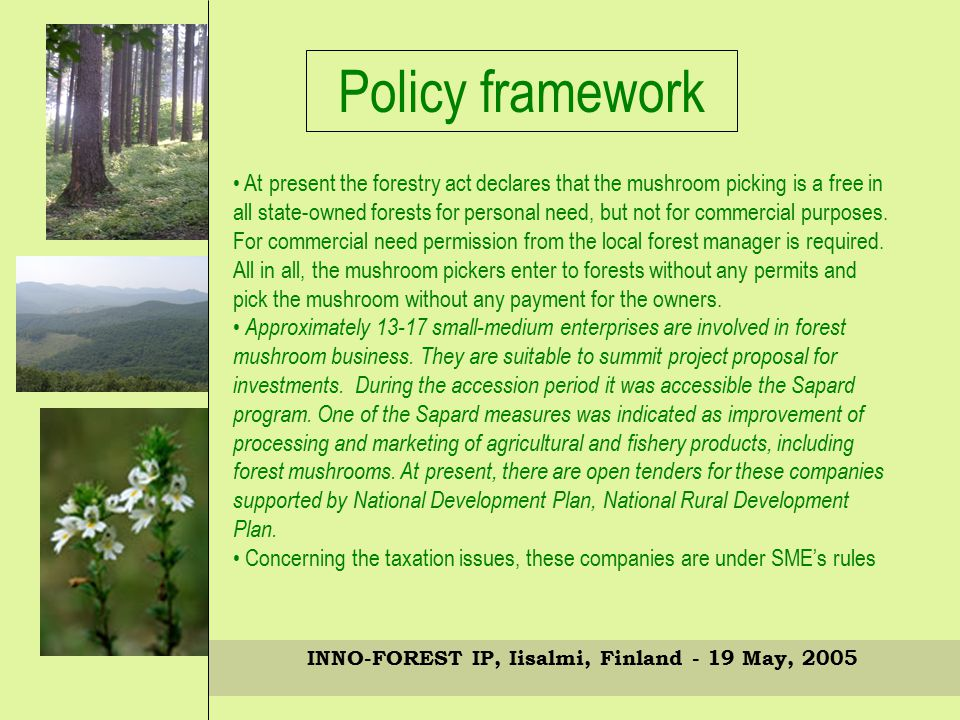 INNO-FOREST IP, Iisalmi, Finland - 19 May, 2005 Policy framework At present the forestry act declares that the mushroom picking is a free in all state-owned forests for personal need, but not for commercial purposes.