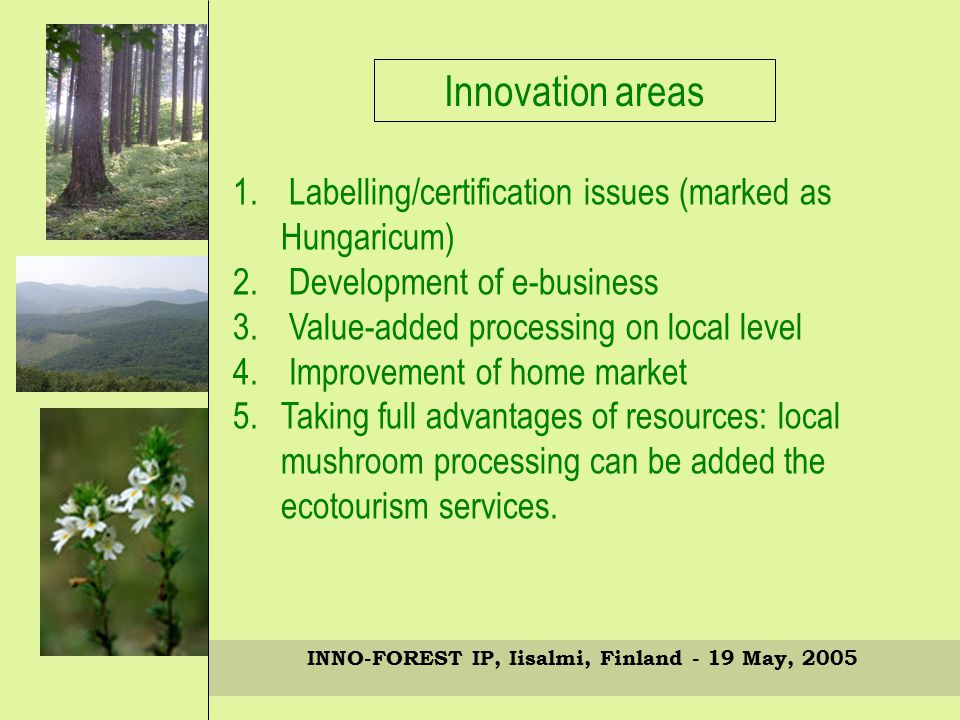 INNO-FOREST IP, Iisalmi, Finland - 19 May, 2005 Innovation areas 1.