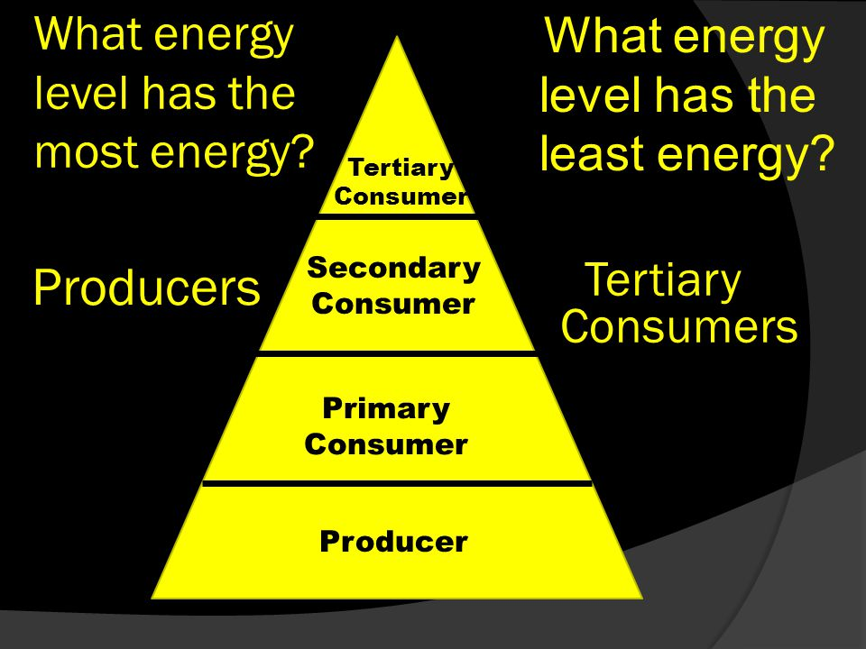 What energy level has the most energy. What energy level has the least energy.