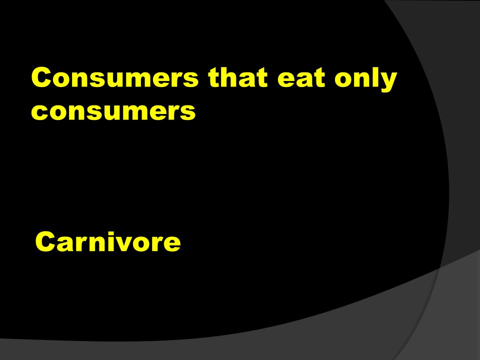 Consumers that eat only consumers Carnivore