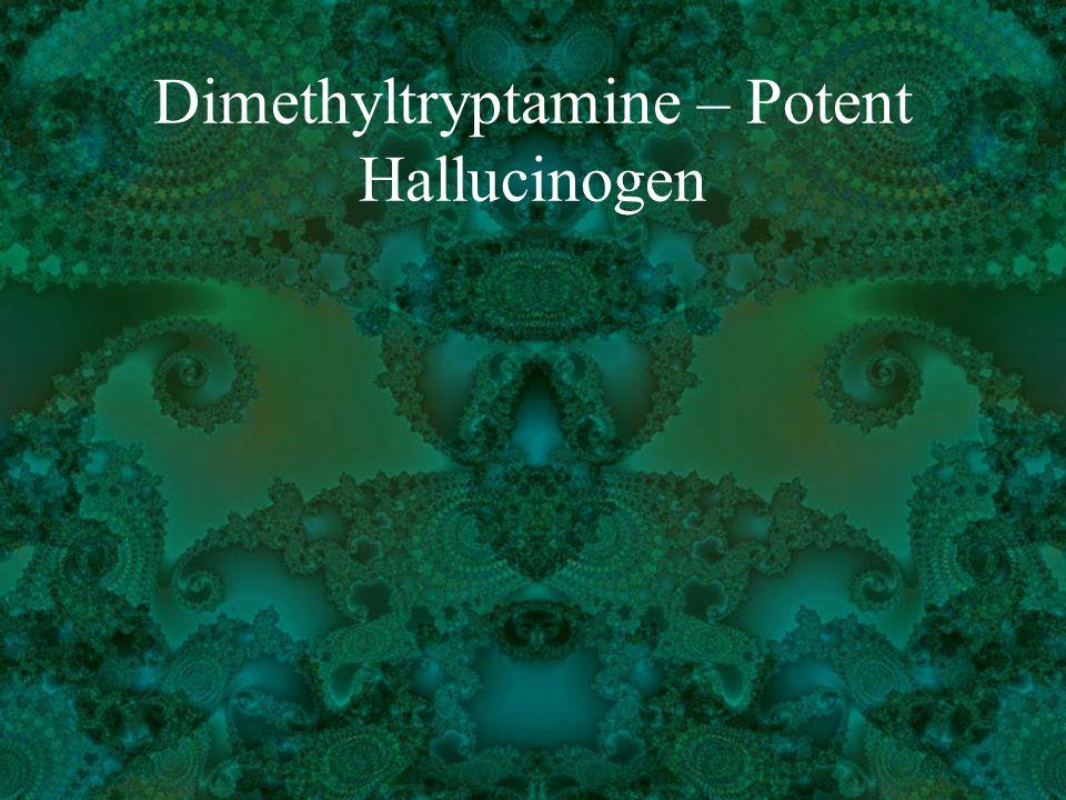 Dimethyltryptamine – Potent Hallucinogen