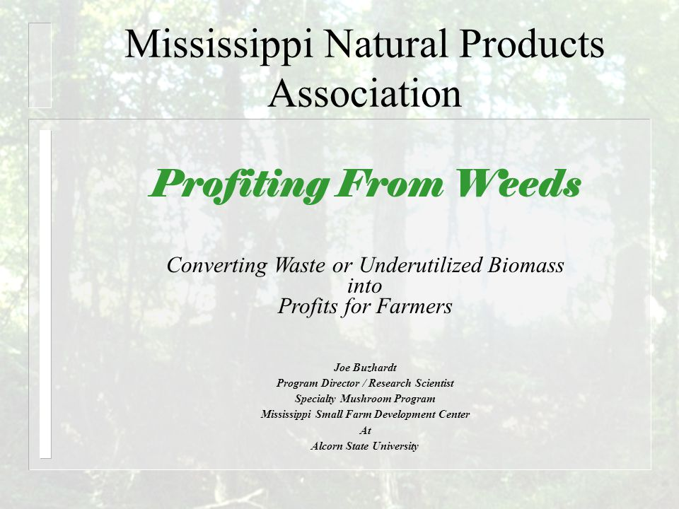Mississippi Natural Products Association Profiting From Weeds Joe Buzhardt Program Director / Research Scientist Specialty Mushroom Program Mississippi Small Farm Development Center At Alcorn State University Converting Waste or Underutilized Biomass into Profits for Farmers