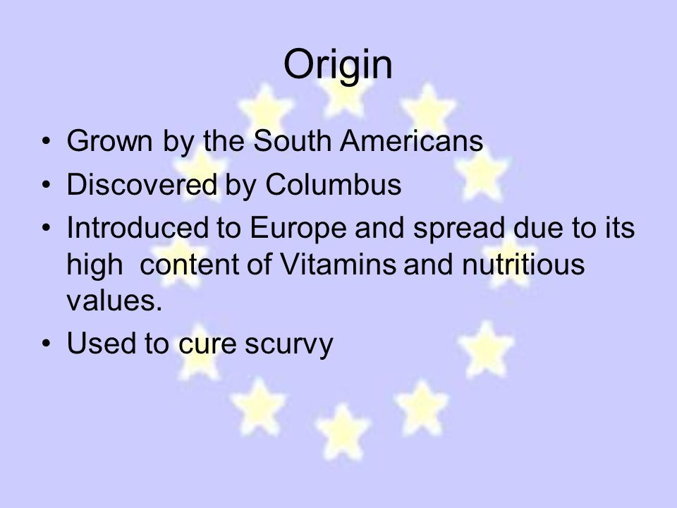 Origin Grown by the South Americans Discovered by Columbus Introduced to Europe and spread due to its high content of Vitamins and nutritious values.