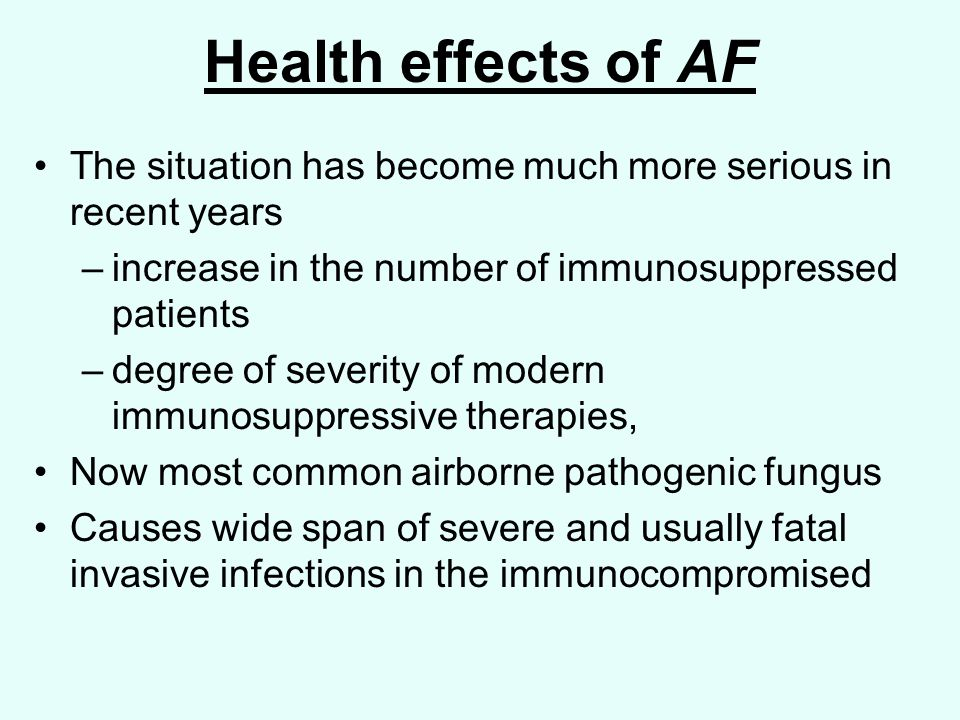Health effects of AF The situation has become much more serious in recent years –increase in the number of immunosuppressed patients –degree of severity of modern immunosuppressive therapies, Now most common airborne pathogenic fungus Causes wide span of severe and usually fatal invasive infections in the immunocompromised