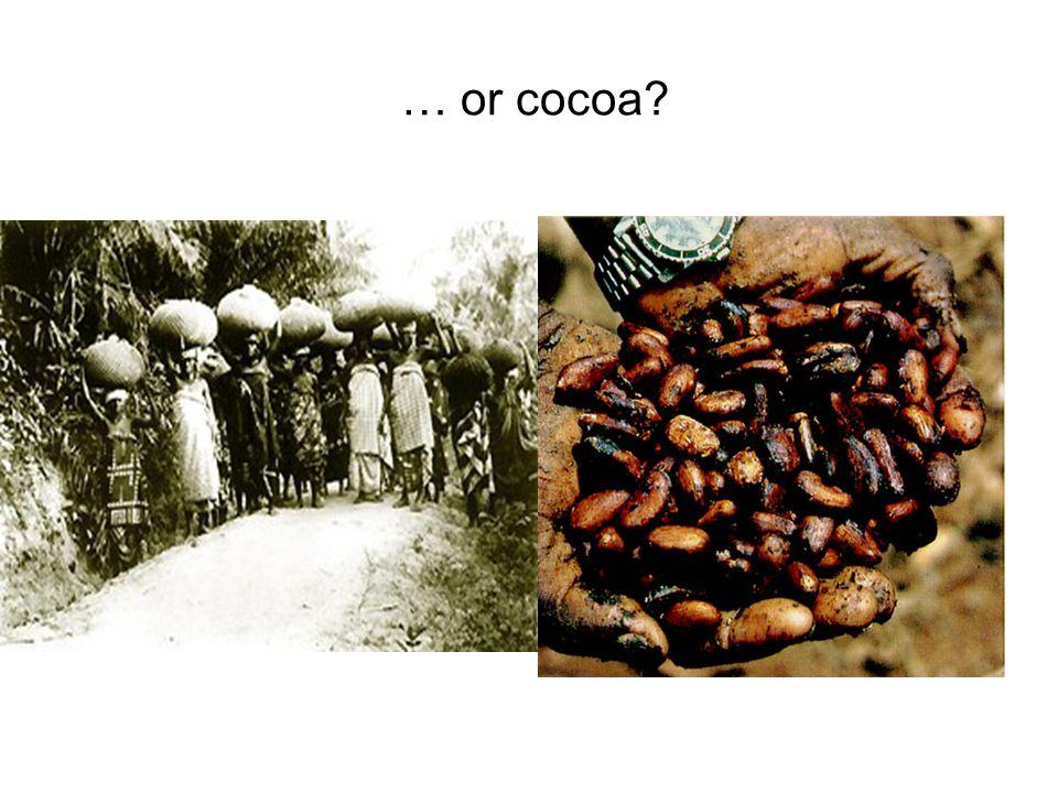 … or cocoa