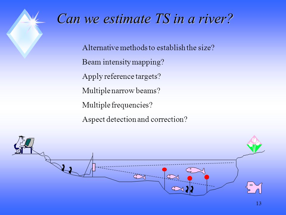13 Can we estimate TS in a river. Alternative methods to establish the size.
