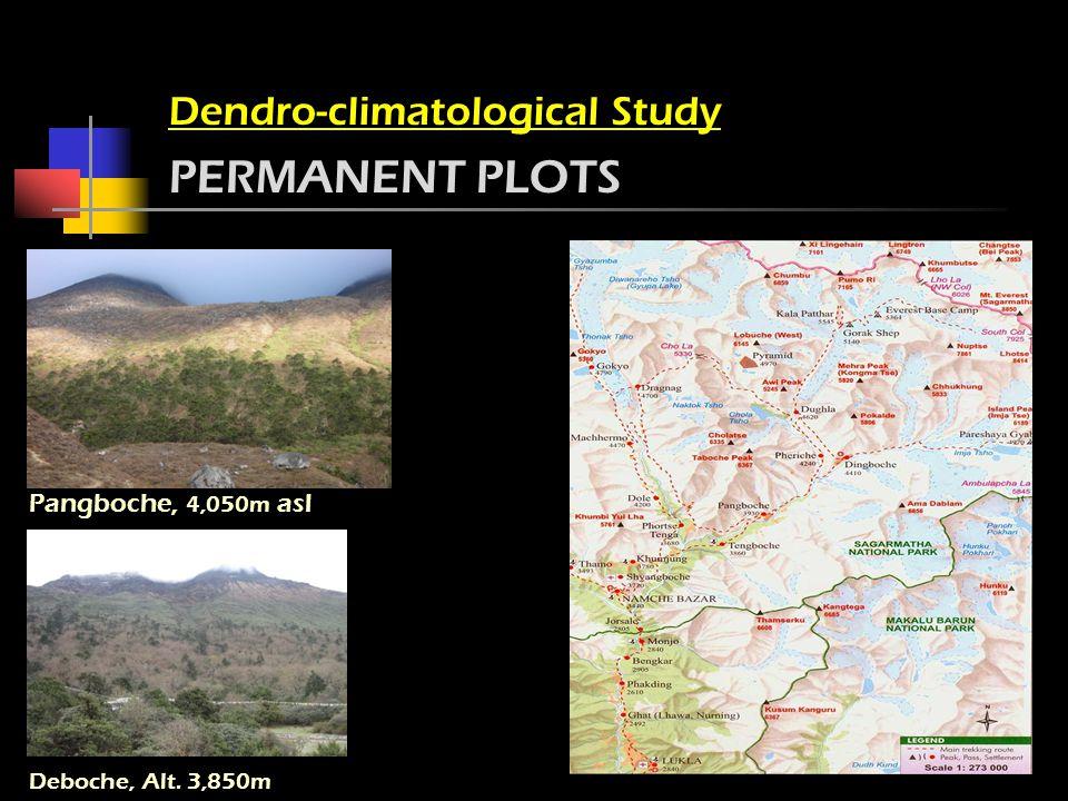 Pangboche, 4,050m asl Dendro-climatological Study PERMANENT PLOTS Deboche, Alt. 3,850m