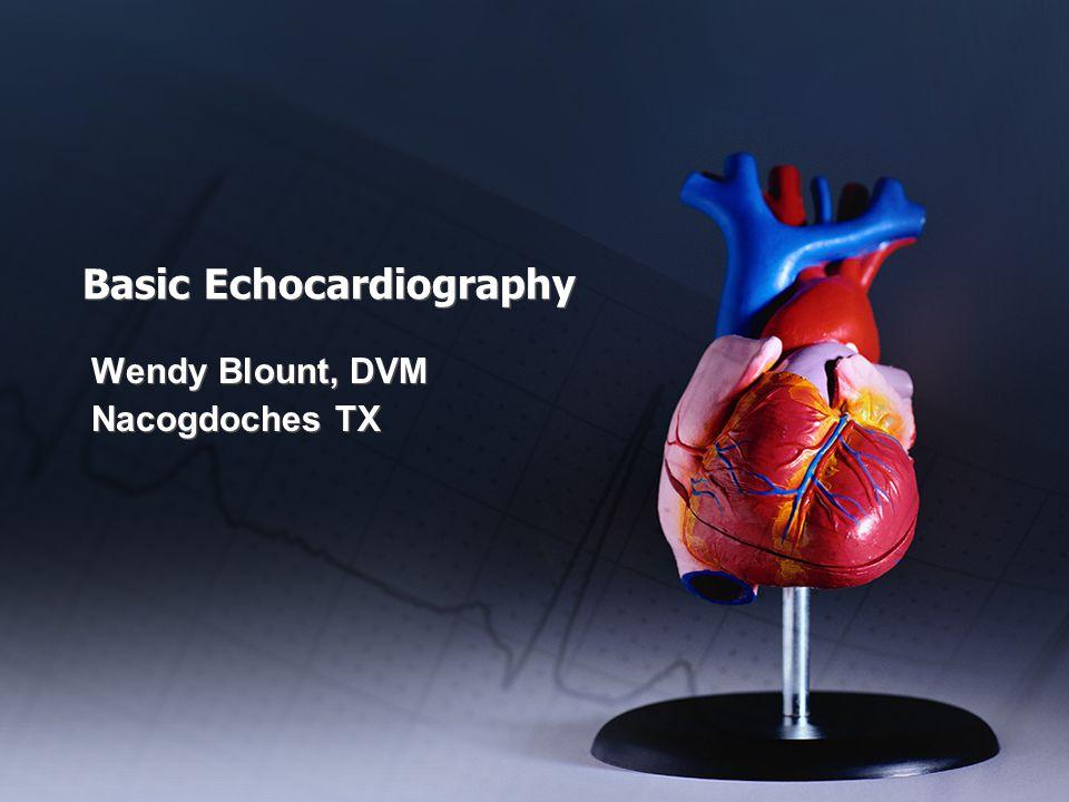 Basic Echocardiography Wendy Blount, DVM Nacogdoches TX Wendy Blount, DVM Nacogdoches TX