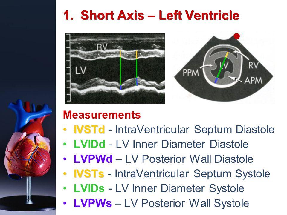 1. Short Axis – Left Ventricle Measurements IVSTdIVSTd - IntraVentricular Septum Diastole LVIDd - LV Inner Diameter Diastole LVPWd – LV Posterior Wall