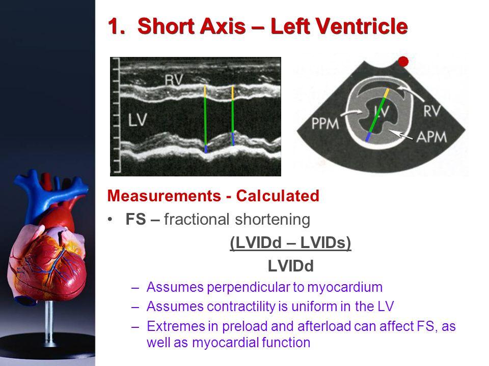 1. Short Axis – Left Ventricle Measurements - Calculated FS – fractional shortening (LVIDd – LVIDs) LVIDd –Assumes perpendicular to myocardium –Assume