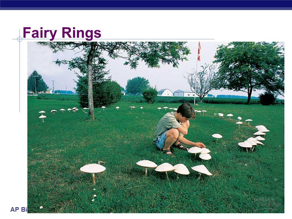 AP Biology Fairy Rings