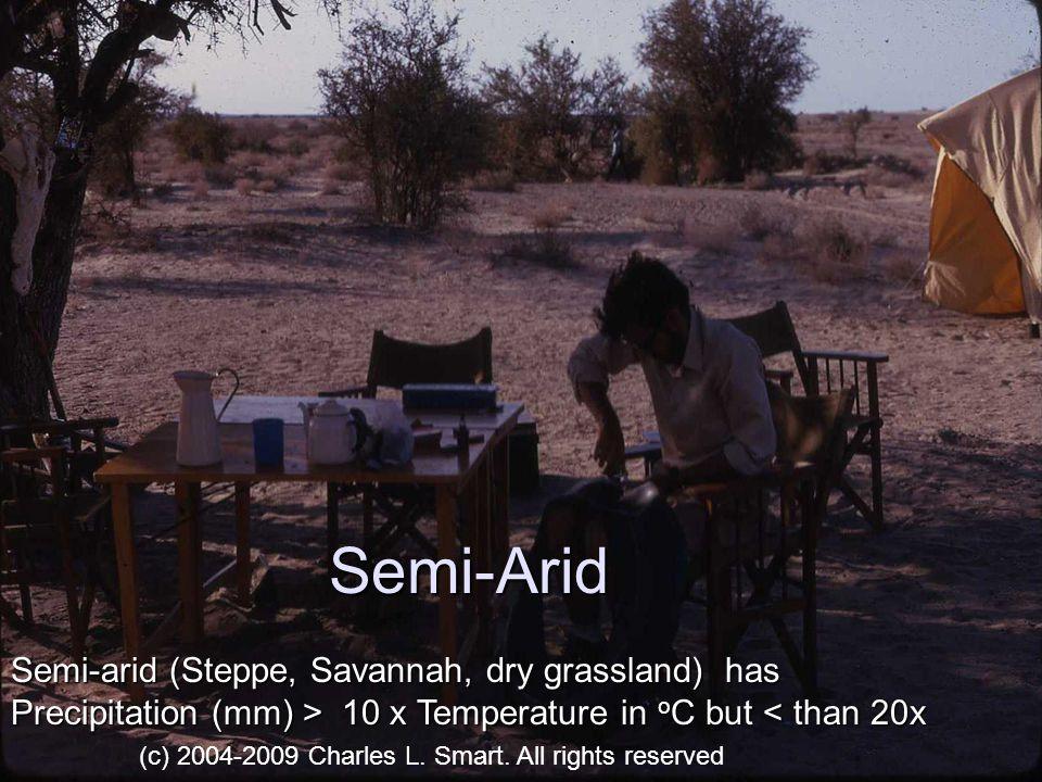 Flash Floods Role of Desert Varnish, lack of plant cover Stream Flood (c) 2004-2009 Charles L.