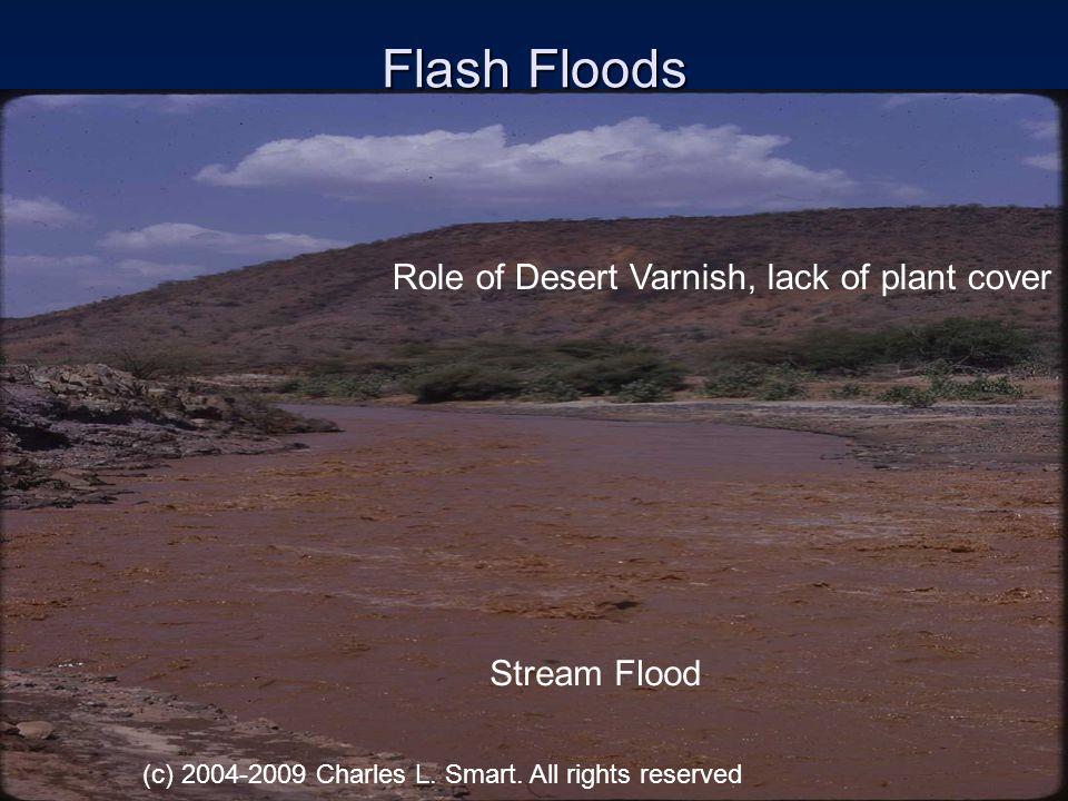 Longitudinal Dunes Constant wind direction, no vegetation