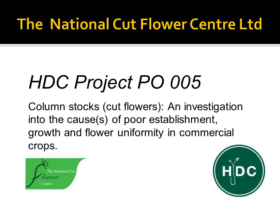 HDC Project PO 005 Column stocks (cut flowers): An investigation into the cause(s) of poor establishment, growth and flower uniformity in commercial crops.