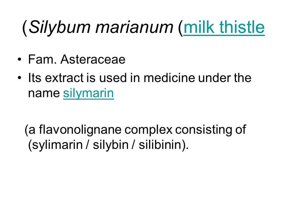 Silybum marianum (milk thistle)milk thistle Fam. Asteraceae Its extract is used in medicine under the name silymarinsilymarin (a flavonolignane comple