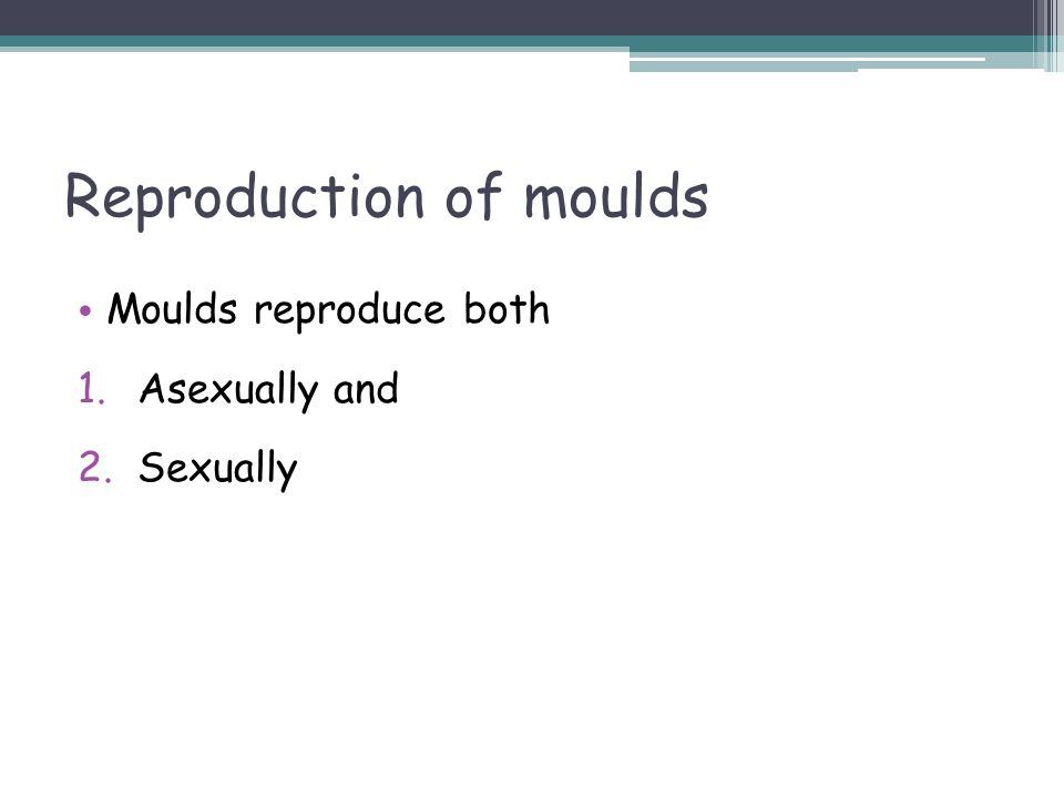 Reproduction of moulds Moulds reproduce both 1.Asexually and 2.Sexually