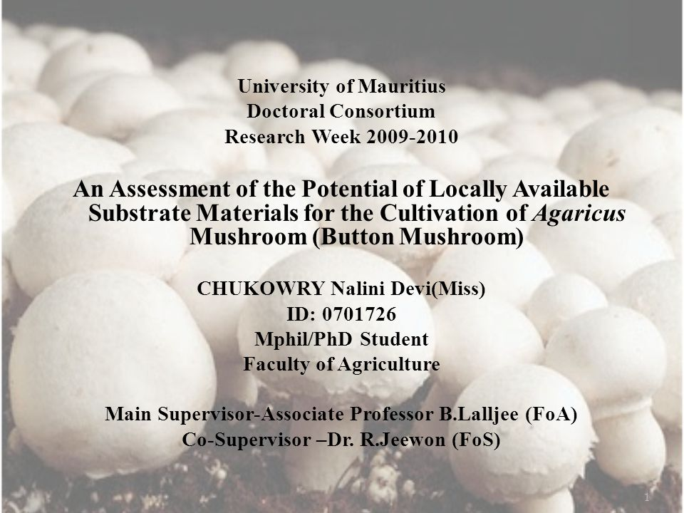 University of Mauritius Doctoral Consortium Research Week 2009-2010 An Assessment of the Potential of Locally Available Substrate Materials for the Cultivation of Agaricus Mushroom (Button Mushroom) CHUKOWRY Nalini Devi(Miss) ID: 0701726 Mphil/PhD Student Faculty of Agriculture Main Supervisor-Associate Professor B.Lalljee (FoA) Co-Supervisor –Dr.