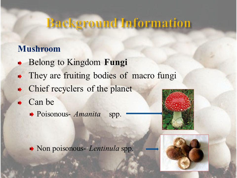 Mushroom Nutritive value-contains protein, vitamin B & D, sodium, potassium & phosphorus Medicinal value-antitumour (Ganoderma Spp.), cholesterol reduction (Pleurotus Spp.) & antiviral/antibacterial properties (Lentinus Spp.) Popular cultivated mushrooms are- Agaricus, Lentinus, Pleurotus, Auricularia and Volvariella Spp.