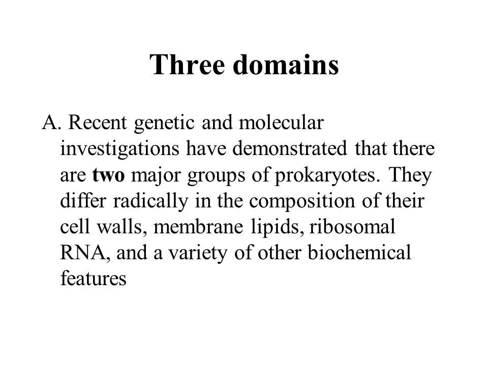 Three domains A.