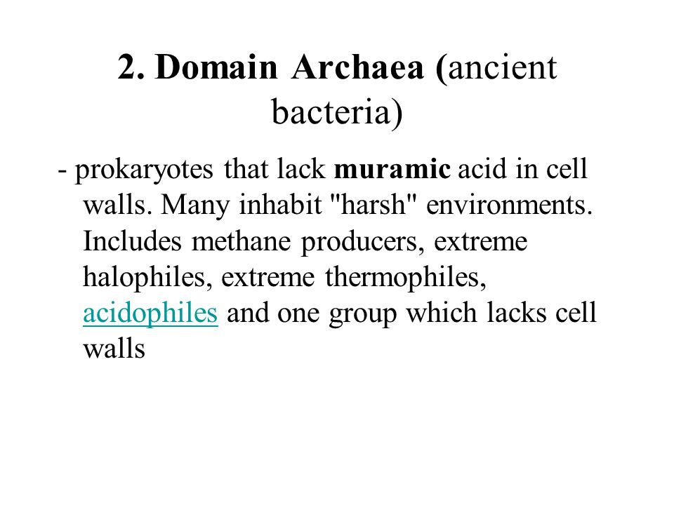 2. Domain Archaea (ancient bacteria) - prokaryotes that lack muramic acid in cell walls.