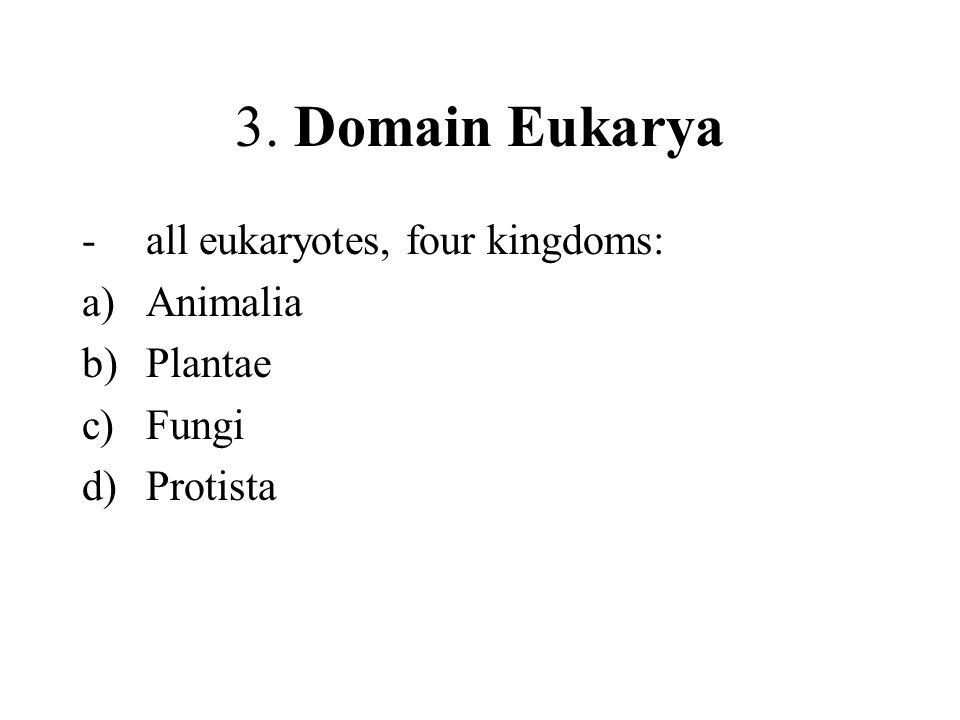 3. Domain Eukarya -all eukaryotes, four kingdoms: a)Animalia b)Plantae c)Fungi d)Protista