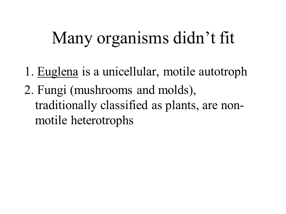 Many organisms didn't fit 1. Euglena is a unicellular, motile autotroph 2.