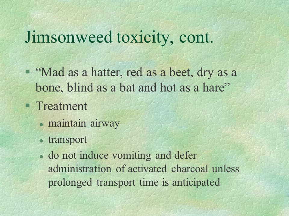 "Jimsonweed toxicity, cont. §""Mad as a hatter, red as a beet, dry as a bone, blind as a bat and hot as a hare"" §Treatment l maintain airway l transport"